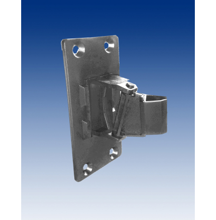 Wall mounted hinge for frame